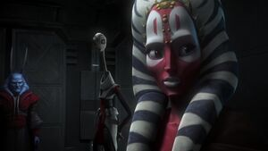 Shaak Ti Intrigued