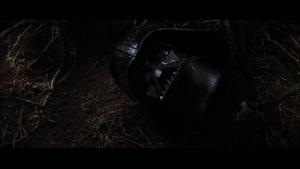 Vader severed head