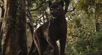 Junglebook2016 bagheera by giuseppedirosso-d9u1xof