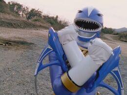 Blue Shark Fighting Fins.jpg