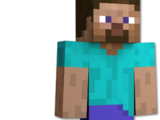 The Minecraft Players
