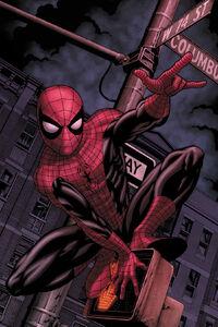 Web of Spider-Man Vol 1 129.1 SinTexto