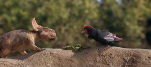 Patchi-meet-Alex-the-Alexornis-bird-narrator-in-walking-with-dinosaurs -1024x456