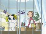 Hikari and Tailmon (Ep. 12)