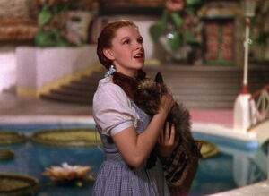 Dorothy Gale 3