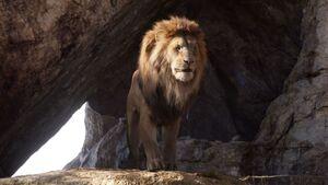 Lionking2019-animationscreencaps.com-899