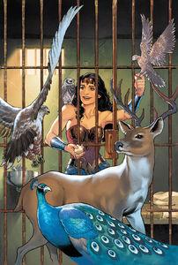 Wonder Woman Vol 5 6 Textless