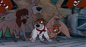 Dodger, Rita, Francis, Einstein, and Tito defending Oliver from Roscoe & DeSoto