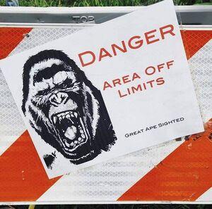 King Kong (MonsterVerse) 2020 Head