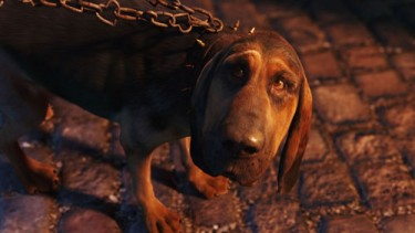 Bayard the Bloodhound