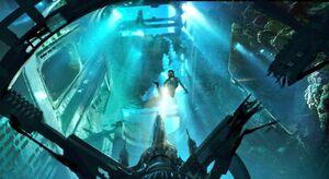 Rey underwater 4