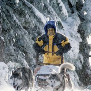 Ted mushing the dogs.jpg