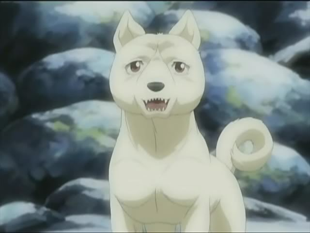 Sakura (Ginga Legend Weed)