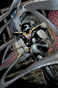2746574-catwoman 18