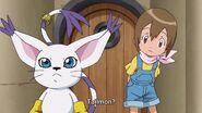 Hikari looks at Tailmon (Are you okay Tailmon)