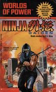 Ninja Gaiden - Worlds of Power