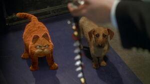 Garfield & Odie facing Happy Chapman