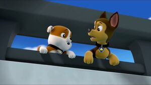 Paw Patrol (Rubble and Chase) We Need To Help Her