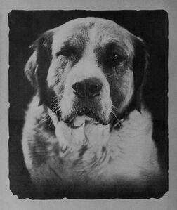 Buck 1923