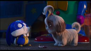 Captian Snowball and Daisy