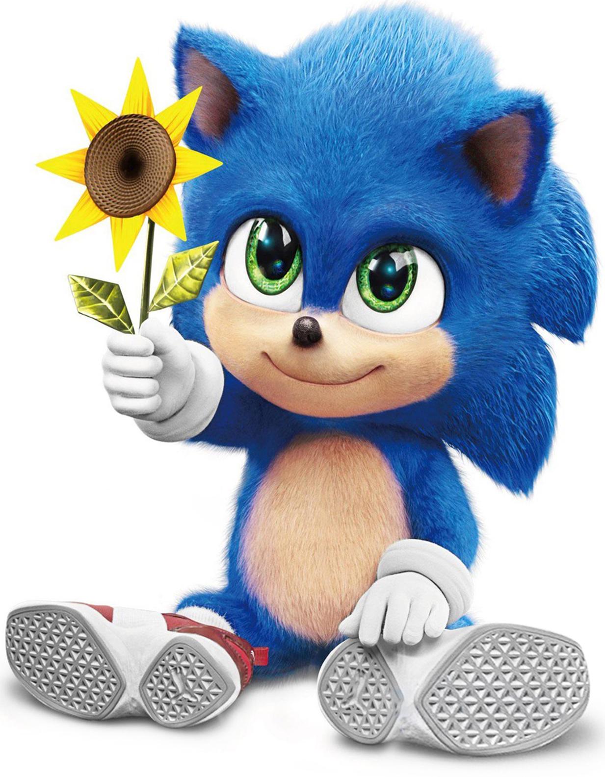 Sonic The Hedgehog Live Action Heroes Wiki Fandom