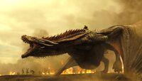 Drogon Series Seven