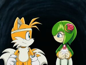 Tails and Cosmo chatting