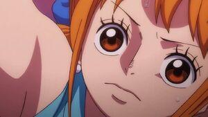 One Piece Nami Close up