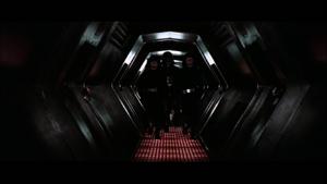 Vader cells