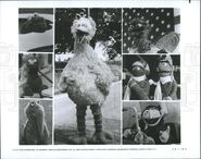 Warner Bros Pictures Sesame Street Follow That Bird Big Bird Cooke Monster Grover Snuffy Oscar Erinie Bert and Count