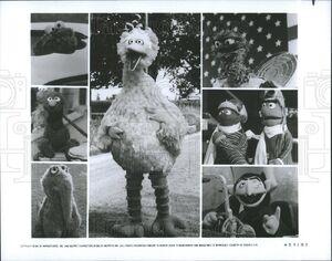 Warner Bros Pictures Sesame Street Follow That Bird Big Bird Cooke Monster Grover Snuffy Oscar Erinie Bert and Count