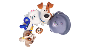 Max, Gidget, Chloe, Snowball, Daisy and Pickles looking at viewers