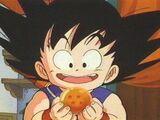 Goku/Synopsis