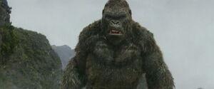 Kong angry