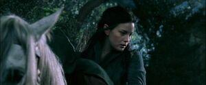Arwen Rider