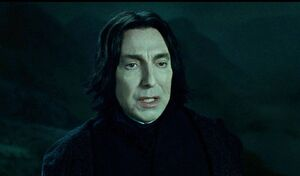 Harry-potter7-movie-screencaps.com-9207