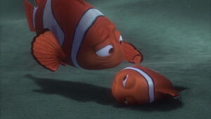 Marlin & Nemo reuniting