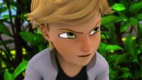 Animan - Adrien 05