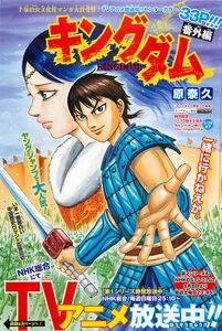 Kingdom Side Story Chap 250.1 Cover