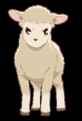 2019 Animal