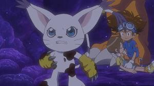 Gatomon, Hikari, Taichi and Greymon
