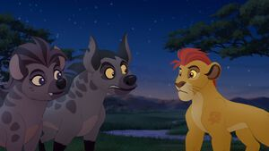 Janja Explains
