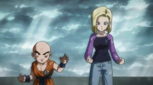 Android 18 Survival Arc (10)
