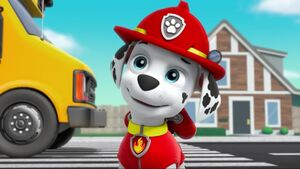 PAW Patrol Pups Save a School Bus Scene 49 Marshall