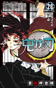 Volume 20 (Kimetsu no Yaiba)