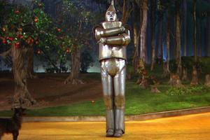 Tin Woodman 9