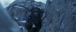 War For The Planet Of The Apes 2017 Screenshot 3584