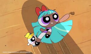 Powerpuff girls Bliss CNNPH