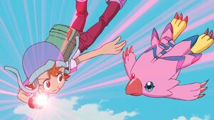 Sora's Digivice glows to make Biyomon to digivolve