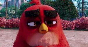 Angry-birds-disneyscreencaps.com-2445